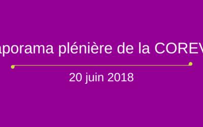 Diaporamas de la plénière du 20 juin 2018
